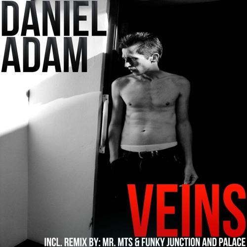 Daniel Adam - Veins - PALACE VS FUNKY JUNCTION Dub Remix