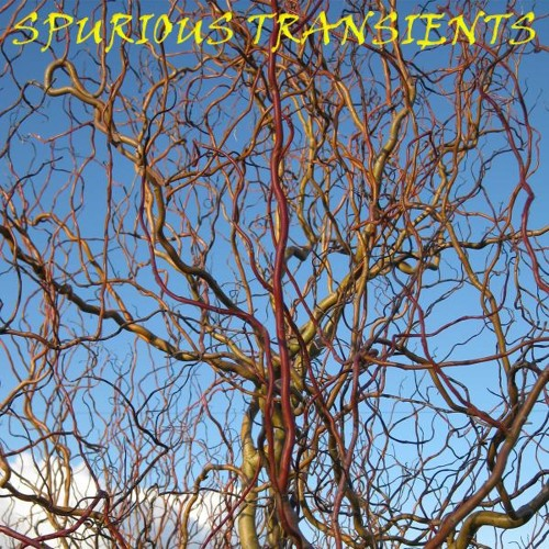 BBCSS - The Genial Terrence Weld [Spurious Transients' tampura remix]