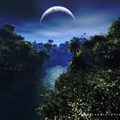 Dj Shi-Drum n´Reggae vol.12(Night in the jungle)