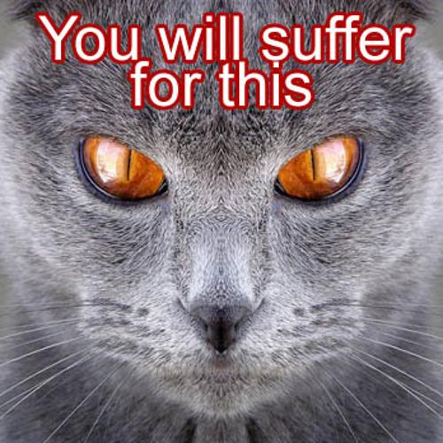 en-Wout-you'llsuffer (MORE) VikkeiVsmR(rmx)