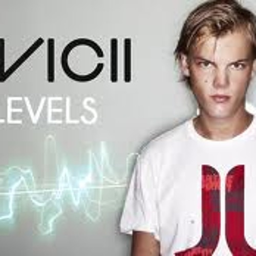 Avicii-levels (remix)