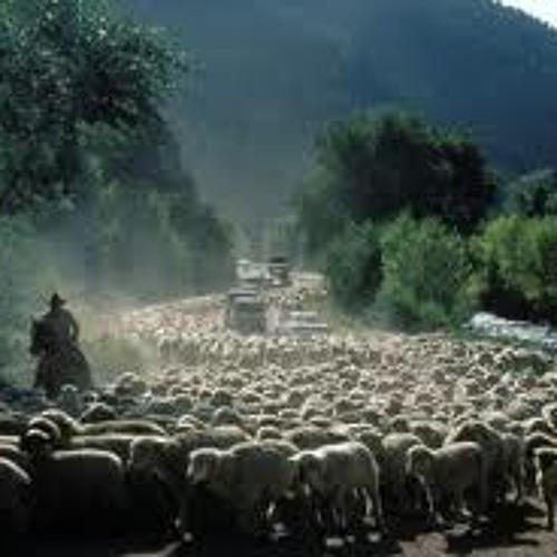 赶牲灵 Driving Livestock