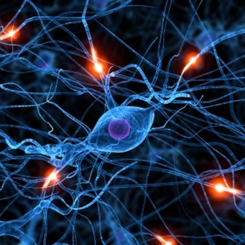 Neurogenesis - 2012 Demo