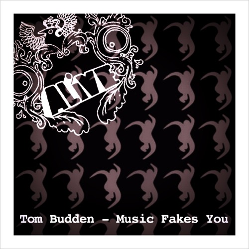Tom Budden - Music Fakes You [Free Download // 320kbps]