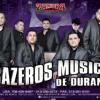 La Abeja Miope  Remix Brazeros Musical Saludando A (DjSpin)