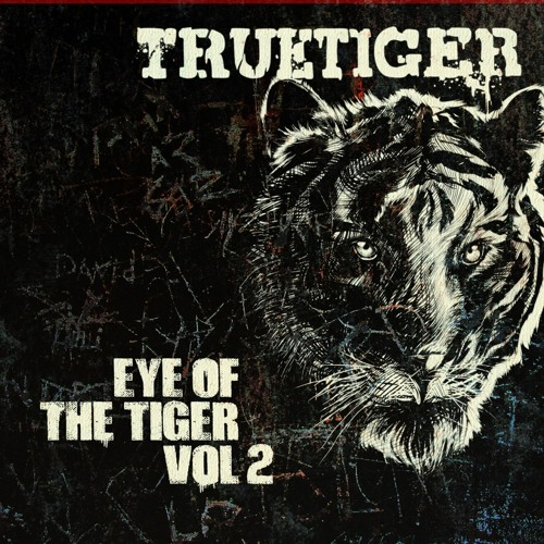 Put Your Bet's On - True Tiger ft. Scrufizzer
