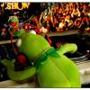 Kermit Dub