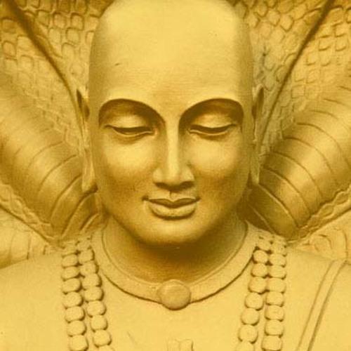 Yoga Chitta Vrittis Nirodah