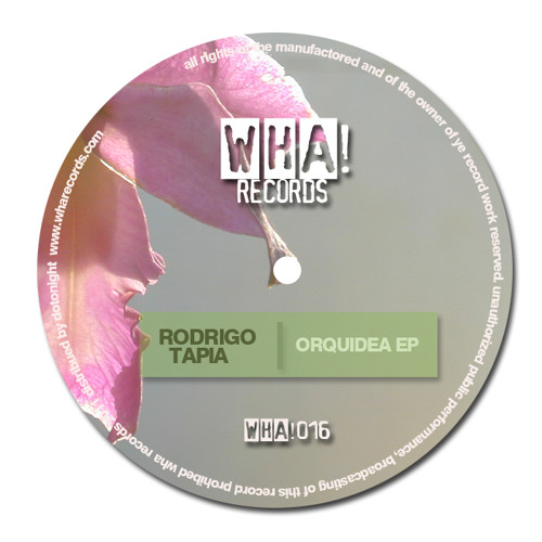 Orquidea (Original mix)