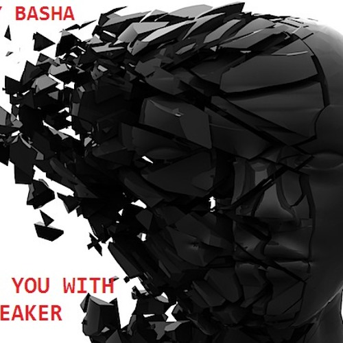 Fuck You With A Speaker - Hady Basha