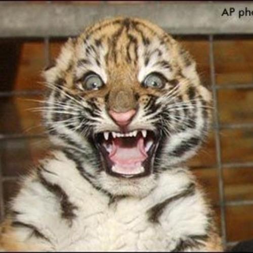 Duran Duran Duran - Tigerbeat6/Tigerbass megamix