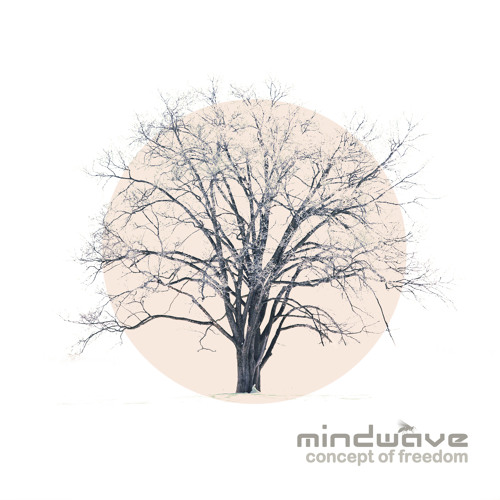 Mindwave - Levity