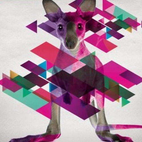 Punx Kangaroo (PVillalobos Mashup) - Tristan Garner vs Sander van Doorn & Julian Jordan