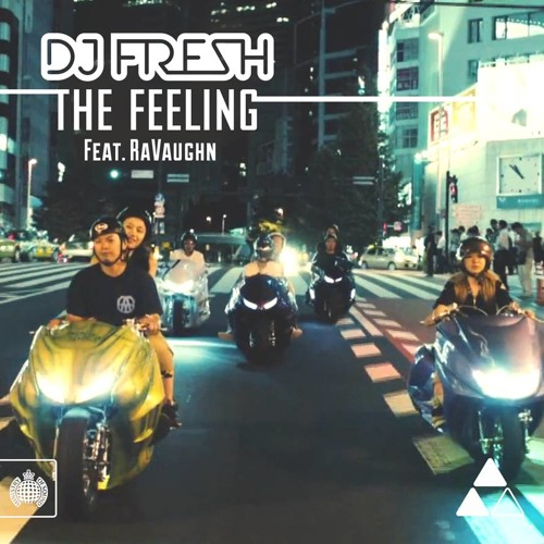 DJ Fresh ft. RaVaughn - The Feeling (Hadouken! Remix)