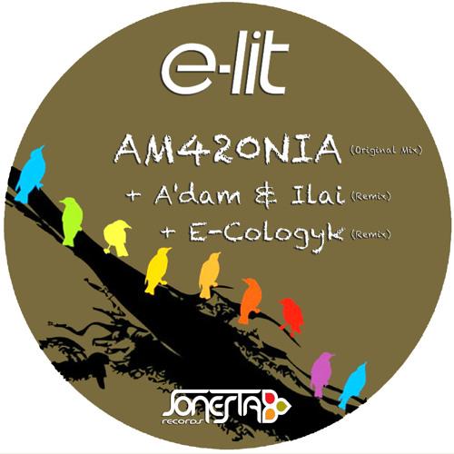 E-Lit - AM420NIA (E-Cologyk Remix)