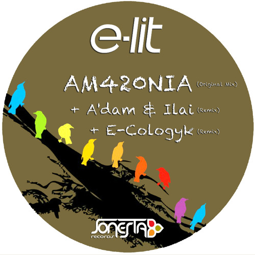 E-Lit - AM420NIA