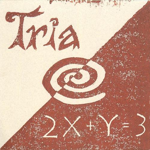 Tria - Pierce The Veil(Remix)