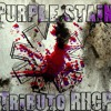Scar tissue - Purple Stain Tribute Band