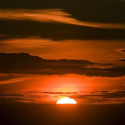 Sundown Signal (Ft. Kam Solstice)
