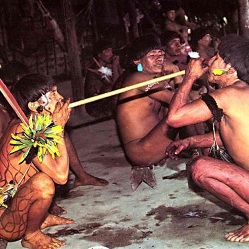 Waxuma - Golpe de Rapé