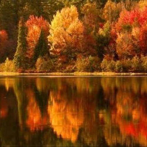 Fall In Minnesota (original song)