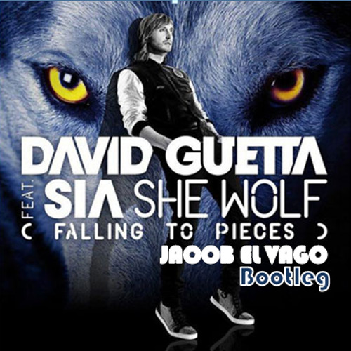 David Guetta Feat. Sia - She WoIf (Jacob El Vago Bootleg) *preview*