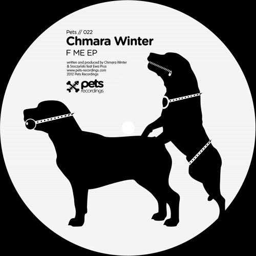 Chmara Winter & Sroczynski 'Would you like to f me' Tim Paris Remix (Pets rcds 2012)