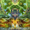 Rainbow Warrior - Get Angry