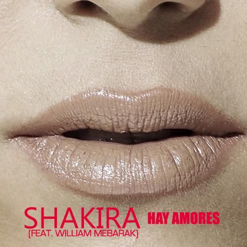 Hay Amores (feat. William Mebarak)
