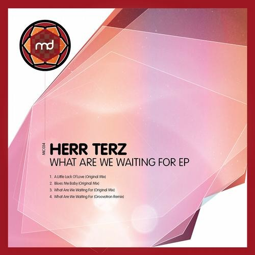 Herr Terz - what are we waiting for(Groovotron remix) Clip on Micro Digital Recs
