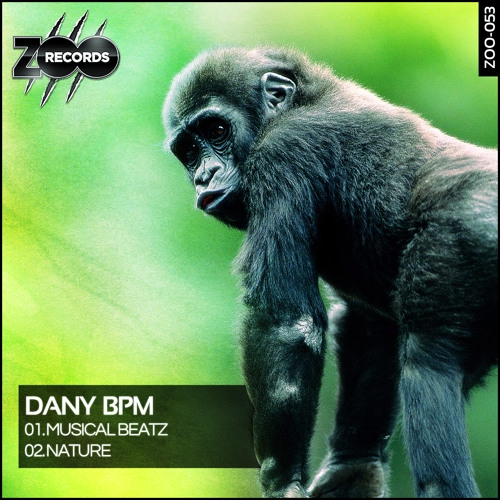 Dany BPM - Musical Beatz [Preview]