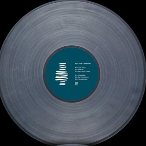 EXIT MINI LP001 - FIS - The Commons LP - Preview Mix