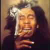 Waka Flocka (it's a party) remake (Smokin Marley) by DeeTee