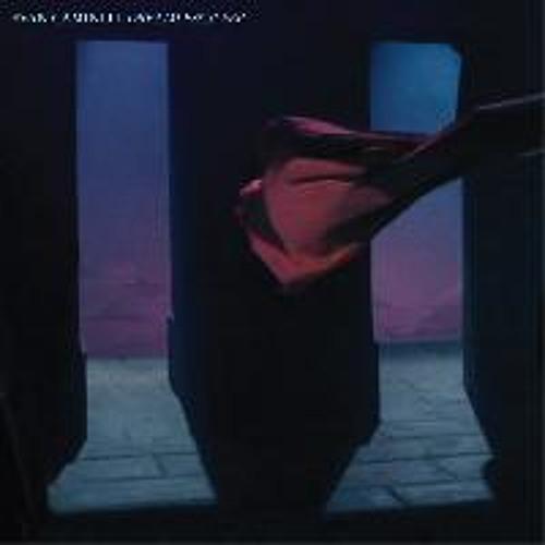 Evan Caminiti f/ Jefre Cantu-Ledesma - Rideaux de Nuit (Bonus Track)