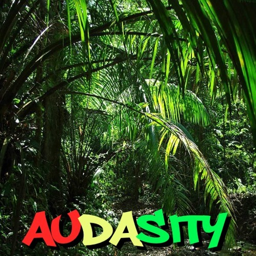 SHOTTA DJ - AUDASITY - DRUM N BASS