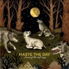 Haste The Day - Dogs Like Vultures (Cover)