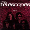 The Telescopes - Please Before You Go