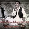 Dj+DeViL+India+-+Aye+Meri+Zohra+Jabeen+(Secret+Mix)