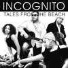 Incognito - Freedom to Love - SM and Dee Jay Geo Remix 320 Kbps Download Link