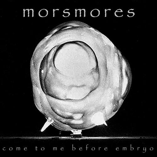 Come To Me Before Embryo [hidden LndRMK remix]