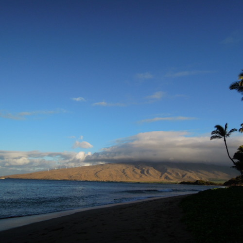 Early Summer Days (on Sugar Beach, Kihei 2012)