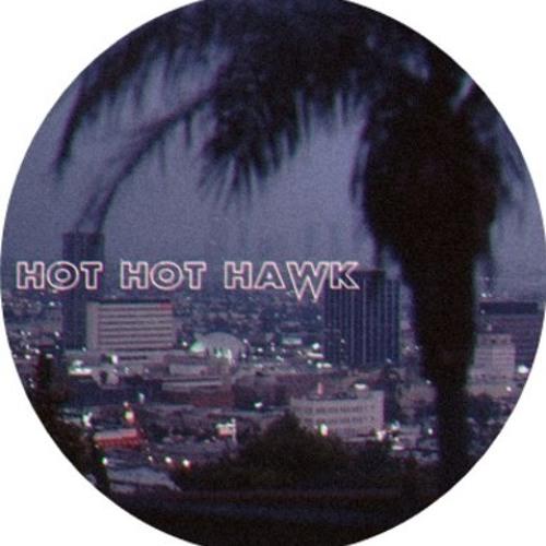 Hot Hot Hawk feat. Pasha - Space Traveller (DigitalNativeDance Remix)