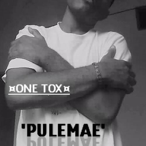 Pulemae - OnetoxBorjuDmp [Shefram Crew]