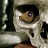 Electronic Skull - Morning Raga