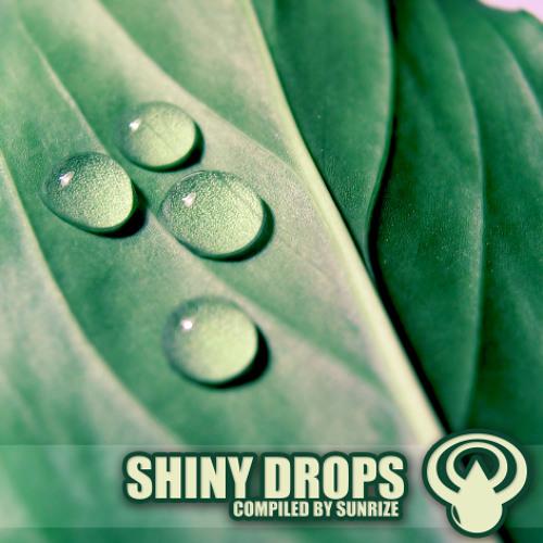 VA - Shiny Drops