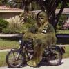 The Wookies - Costera Miguel Aleman (W.O.L.F.