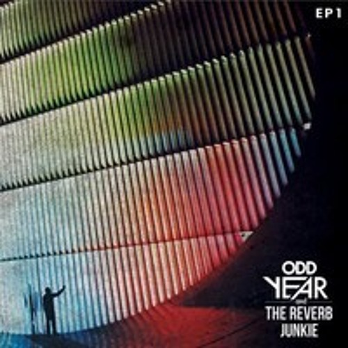 Odd Year & The Reverb Junkie - Don't Say It Didn't Hurt