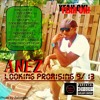 Anez - In my zone (LP)