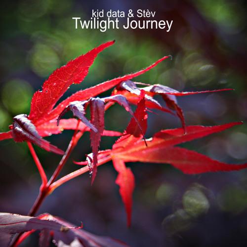 kid data & Stèv - Twilight Journey