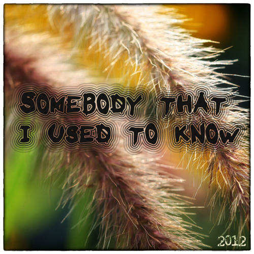Somebody That I used to know [1guitar4jo and Albina]